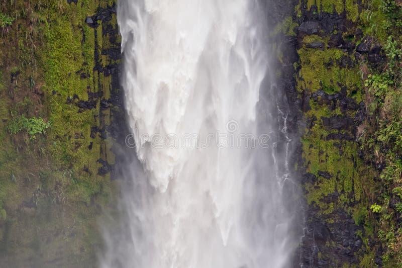 Download Akaka Falls, Big Island, Hawaii Stock Image - Image: 23212083