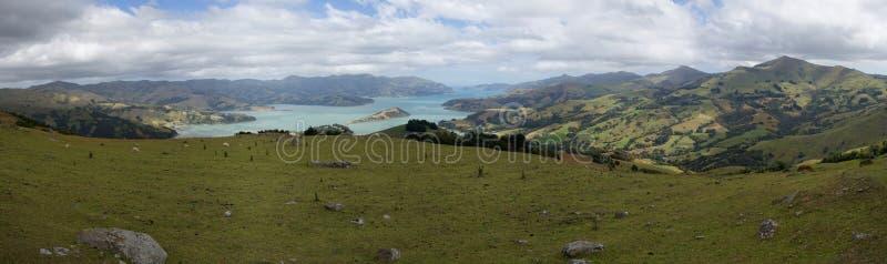 Akaroa港口全景,新西兰 免版税库存图片