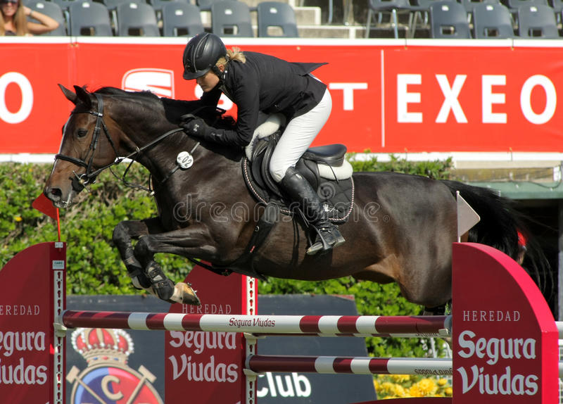 akci bieługi końskie Laura li renwick przejażdżki obrazy royalty free