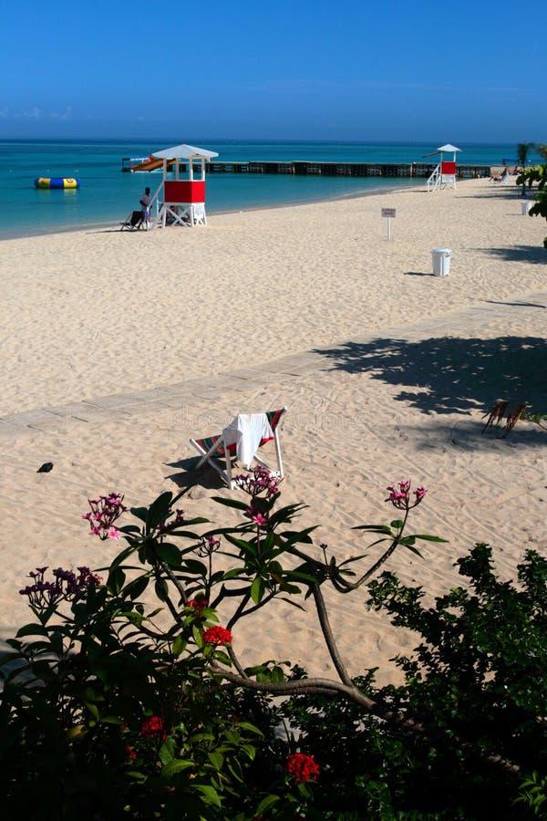 Akcyjny wizerunek królewiątko strażnik królewiątko wioska, Honolulu, Hawaje zdjęcia stock