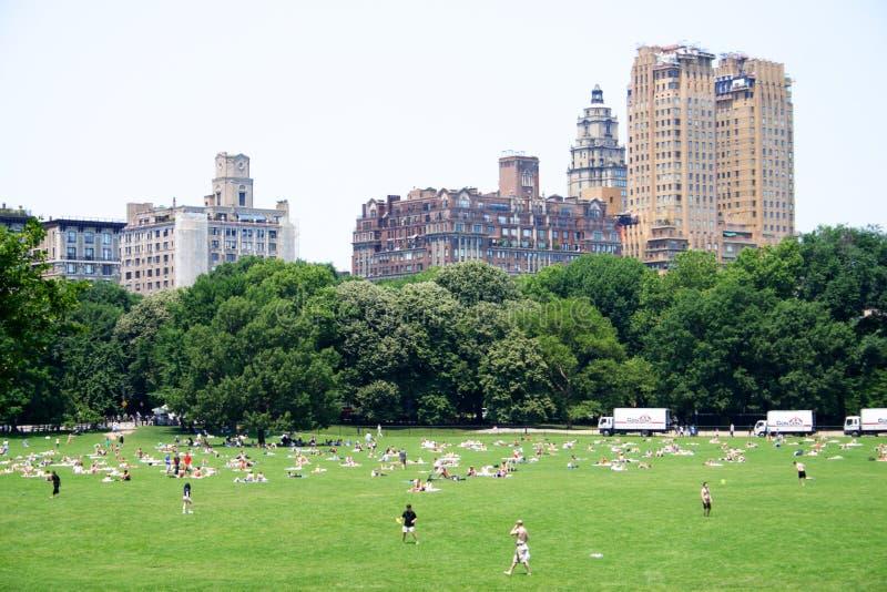 Akcyjny wizerunek Nowy Jork central park, usa obraz stock