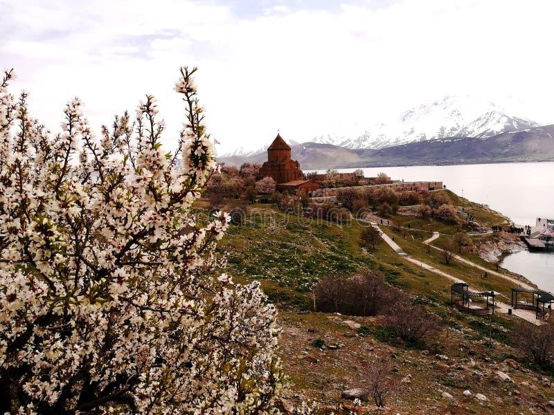 Akdamar wyspa i Akdamar kościół w wiosna czasie obrazy stock