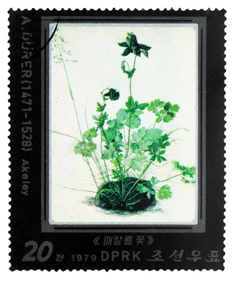 Akeley, Paintings by Albrecht Dürer. serie, circa 1979. MOSCOW, RUSSIA - FEBRUARY 10, 2019: A stamp printed in Korea shows Akeley, Paintings by Albrecht Dü royalty free stock image