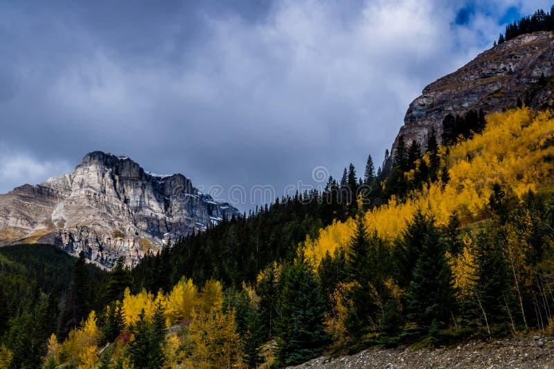Aken ao longo do parque nacional de Banff da via pública larga e urbanizada do vale da curva, Alberta, Canadá imagem de stock royalty free