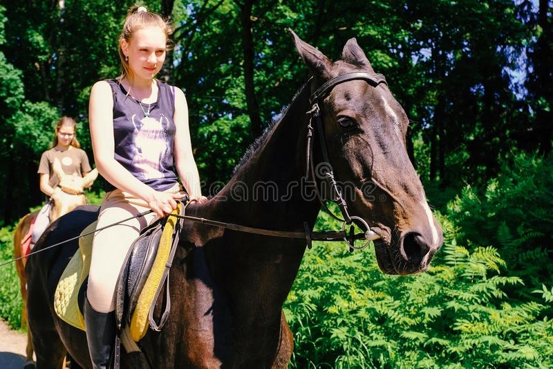 Akhal-Teke horse. Muzzle thoroughbred Akhal-Teke horse, photo outdoors. Ridden by a young rider. Saint-Petersburg. Russia. 06.18. stock photo