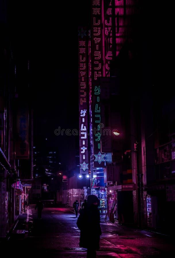 Akihabara noce obraz stock