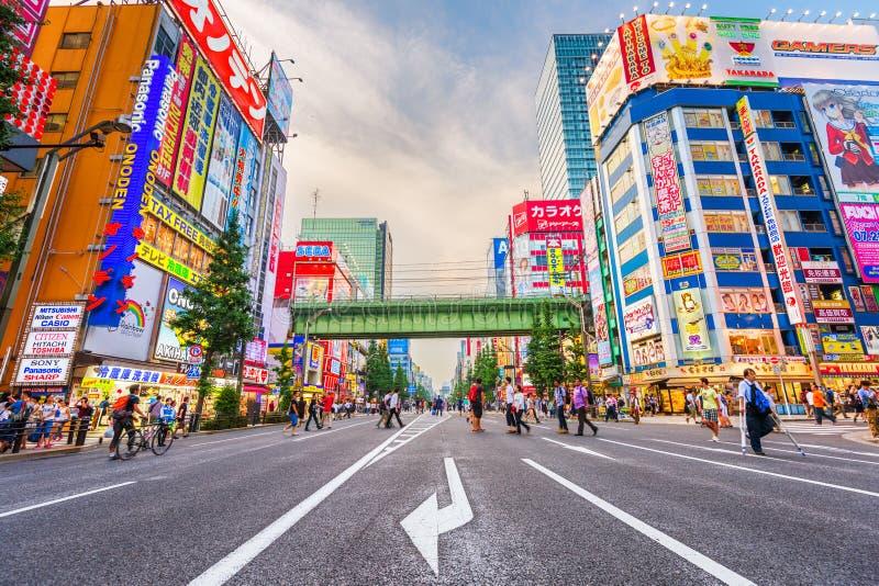 Akihabara, Tokio, Japonia pejzaż miejski przy zmierzchem zdjęcia stock