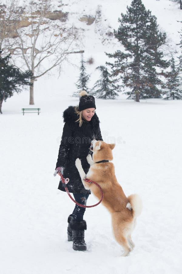 Akita-Hund und ihr Eigentümerspiel am Schneetag im Park lizenzfreies stockfoto