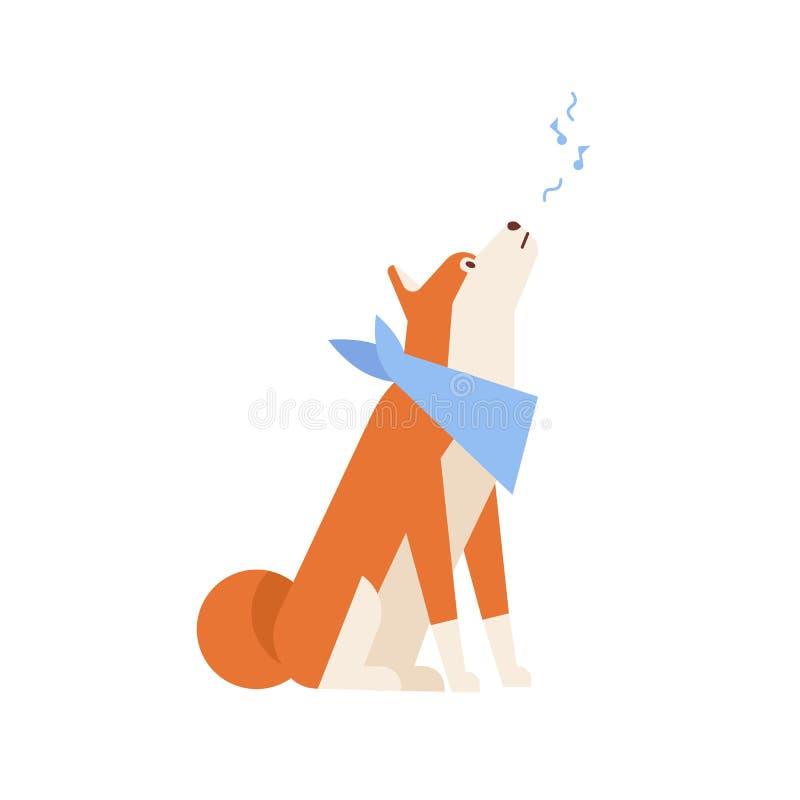 Akita Inu adorable hurlant ou chanson de chant Écharpe de cou de port de chien japonais mélancolique d'isolement sur le fond blan illustration stock