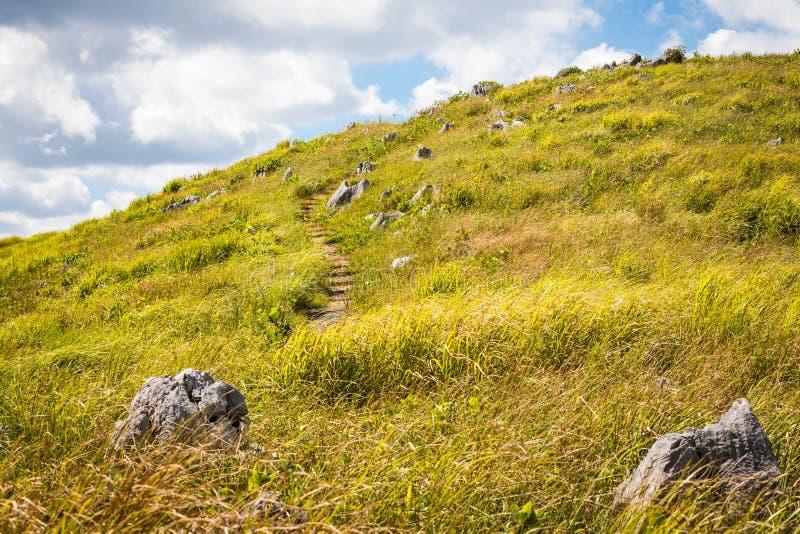 Akiyoshi Plateau Hilltop Trail, Yamaguchi fotografía de archivo