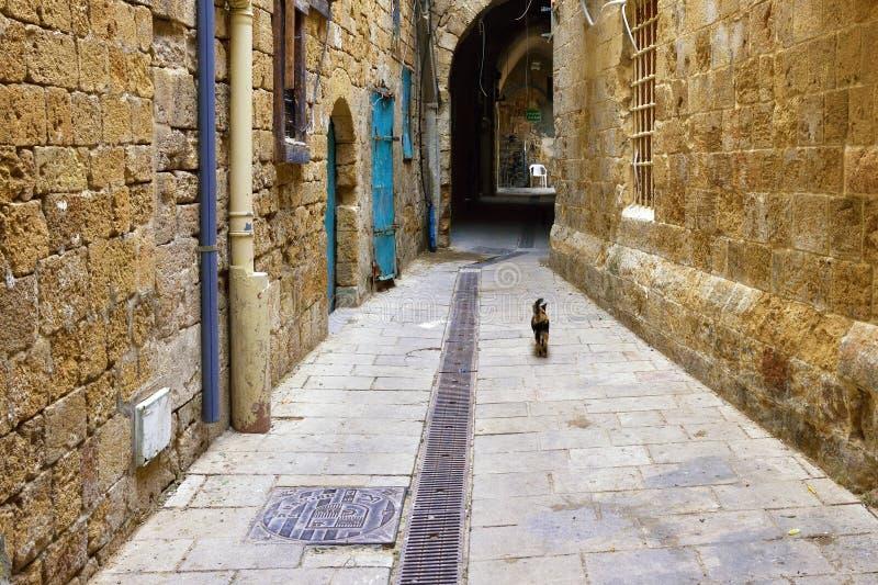 Akko, Israël photo stock