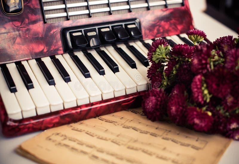 Akordeonów klucze zdjęcia royalty free