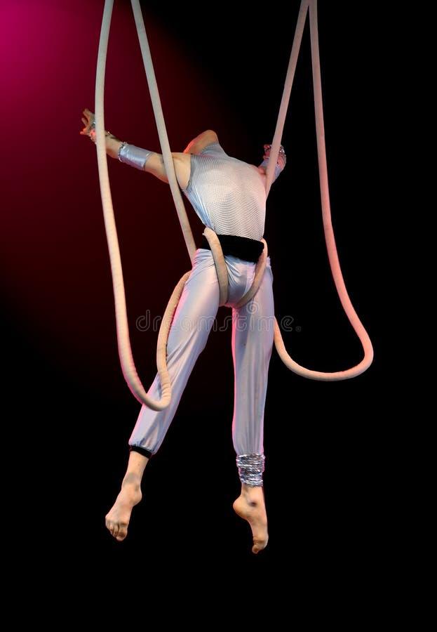 Download Akrobat fotografering för bildbyråer. Bild av verkar, trapeze - 997819