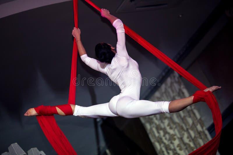 Akrobata fotografia royalty free