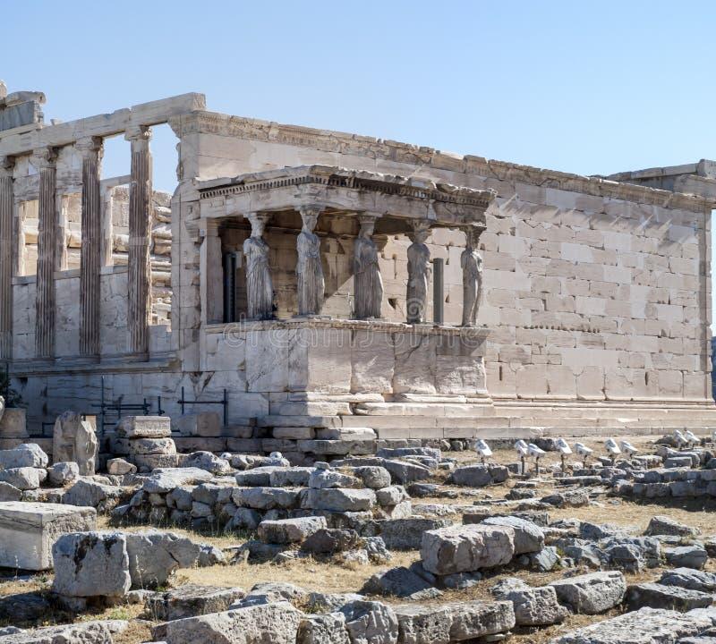 Akropol - Erechtheum świątynia w Ateny obraz stock