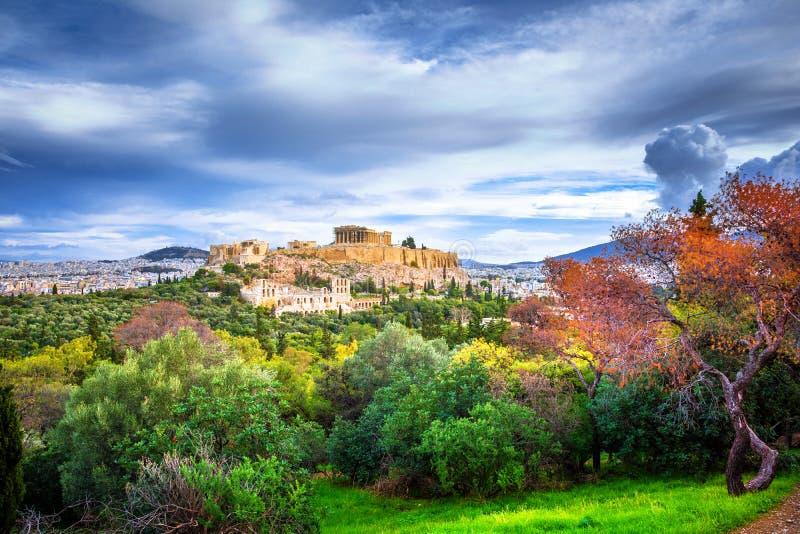 Akropol med Parthenon Sikt till och med en ram med gröna växter, träd, forntida marmor och cityscape, Aten royaltyfri bild