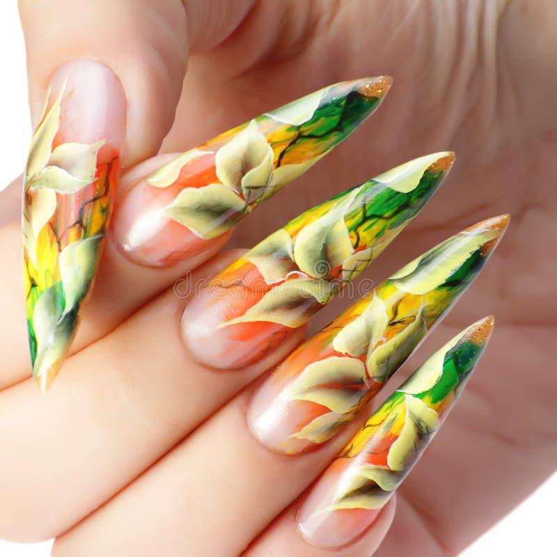 Akrylowi paznokcie zdjęcia stock