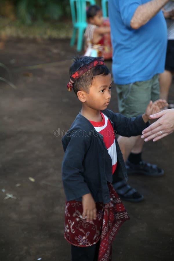 Aktion durch die jungen Waisen einer Kakaos, des Kaffees und der Gewürzplantage am Dorf von Kalibaru in Ost-Java Indonesia stockbilder