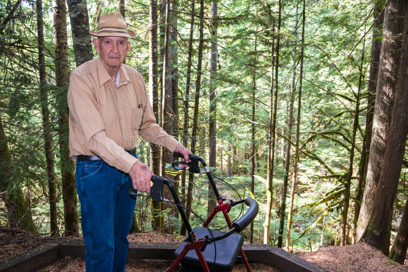 Aktiv äldre man med fotgängaren i skog arkivbilder