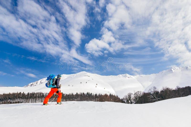 Aktiv backcountry skidåkning för ung man på en härlig solig dag, wi royaltyfri bild