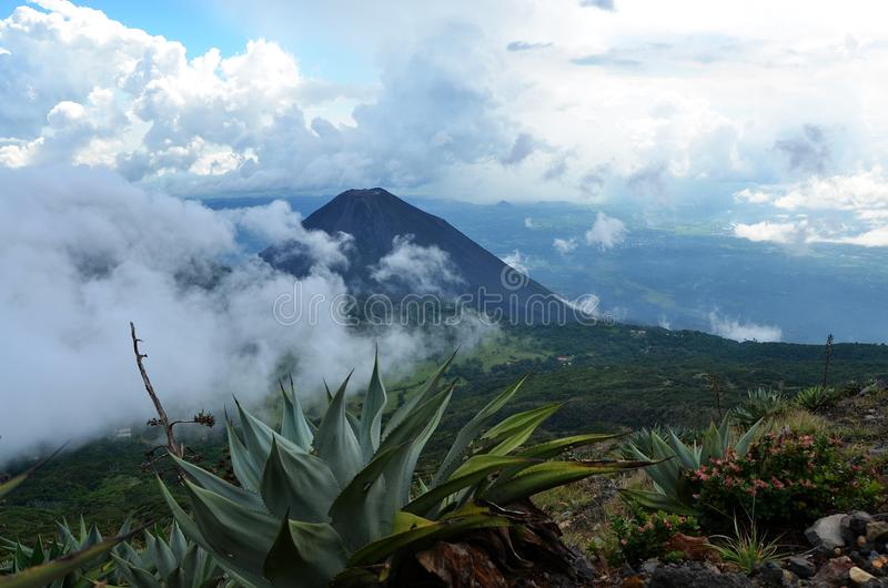 Aktiv vulkan Yzalco i molnen royaltyfria bilder