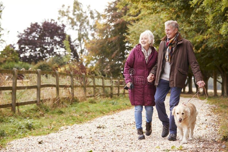 Aktiva höga par på den Autumn Walk With Dog On banan till och med bygd royaltyfri foto