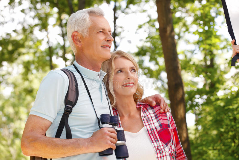 aktiva pensionärer arkivbilder