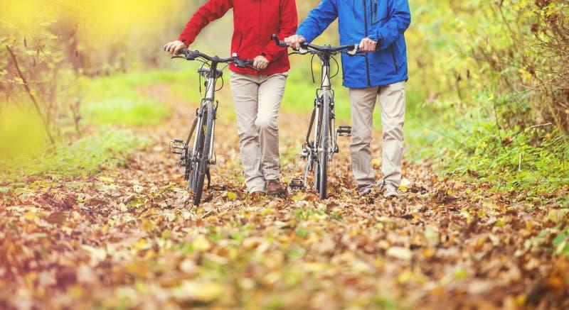 Aktiva pensionärer som går med cykeln royaltyfri bild
