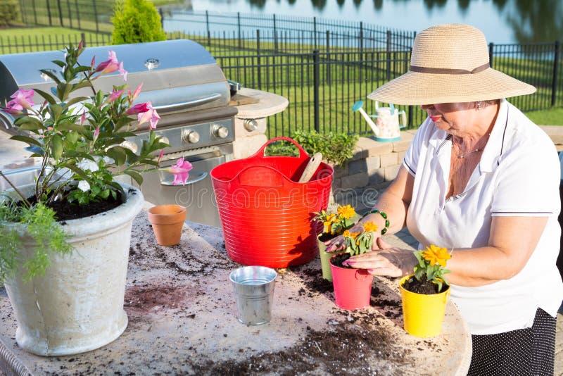 Aktive ältere Frau Potting Ornamentalblumen stockfotografie