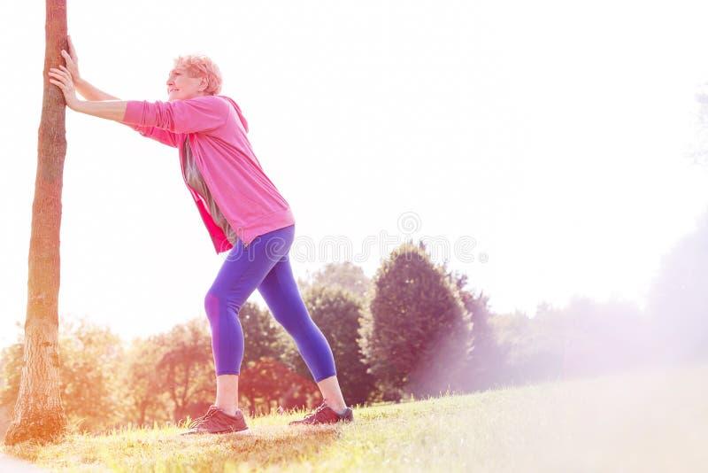 Aktive geeignete ältere Frau, die Baumstammliegestütze im Park tut lizenzfreie stockfotografie