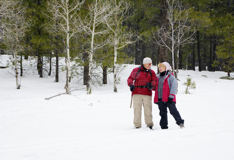 Aktive pensionierte Paare lizenzfreie stockbilder