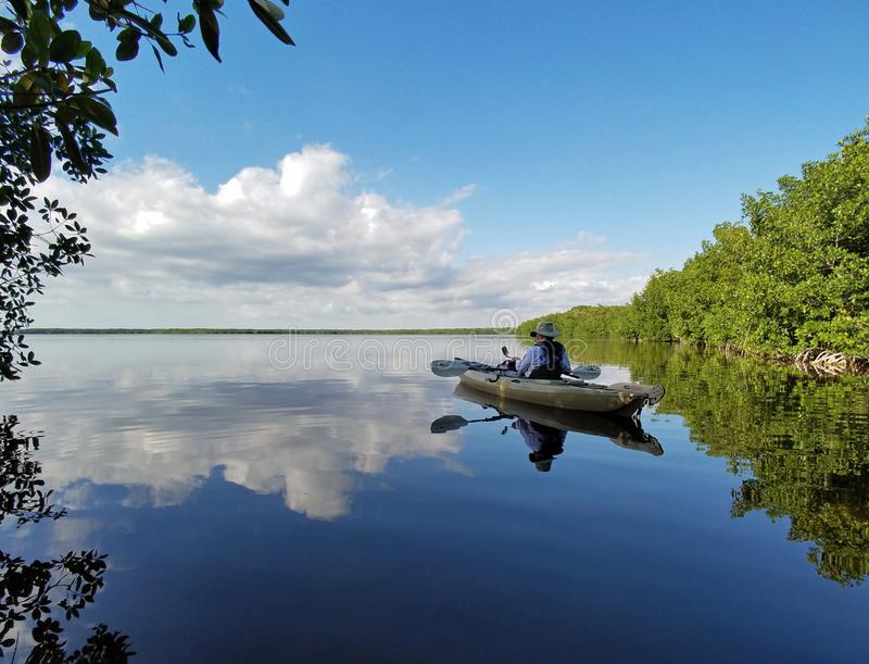 Aktives älteres Kayak fahren auf Blässhuhn-Bucht im Everglades-Nationalpark lizenzfreie stockfotos