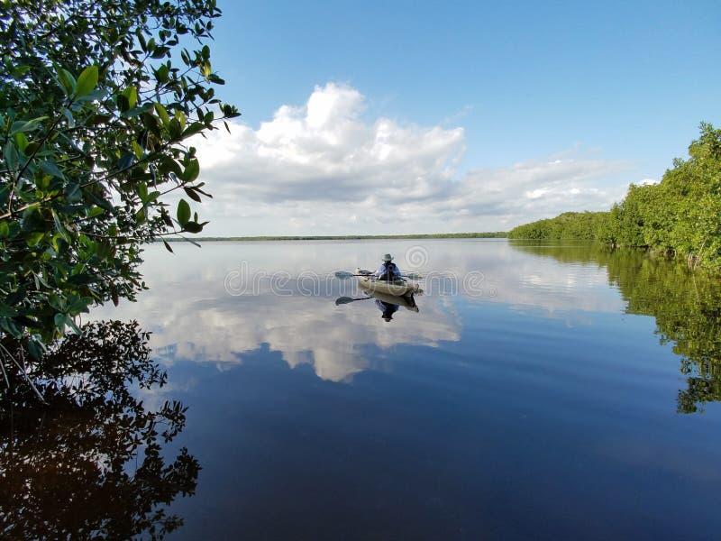 Aktives älteres Kayak fahren auf Blässhuhn-Bucht im Everglades-Nationalpark stockbilder