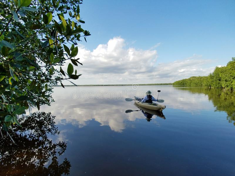 Aktives älteres Kayak fahren auf Blässhuhn-Bucht im Everglades-Nationalpark lizenzfreies stockbild