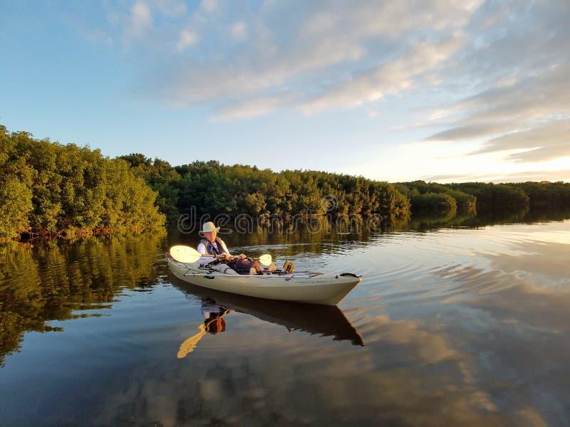 Aktives älteres Kayak fahren auf Blässhuhn-Bucht im Everglades-Nationalpark lizenzfreie stockfotografie
