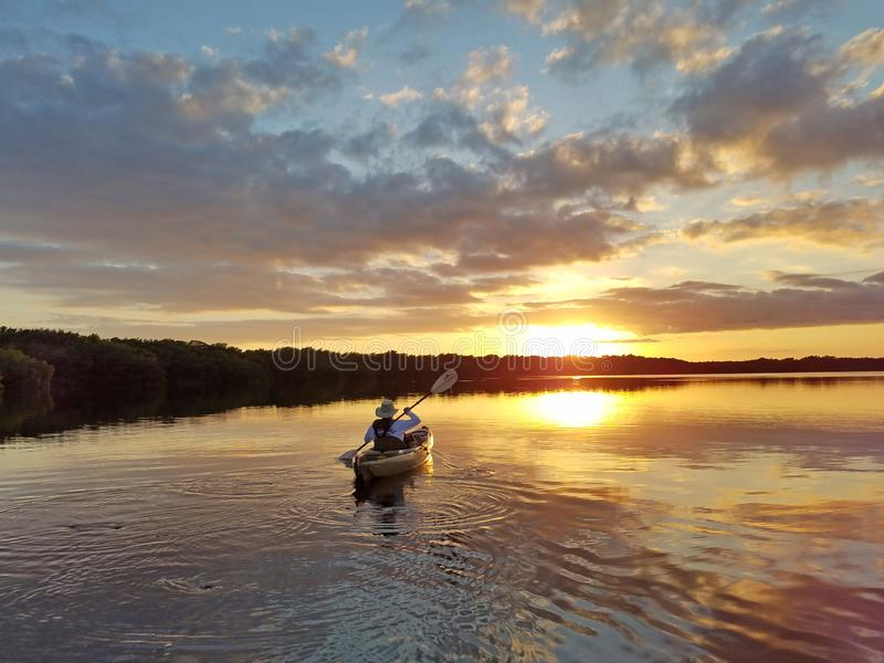 Aktives älteres Kayak fahren auf Blässhuhn-Bucht im Everglades-Nationalpark stockfotografie