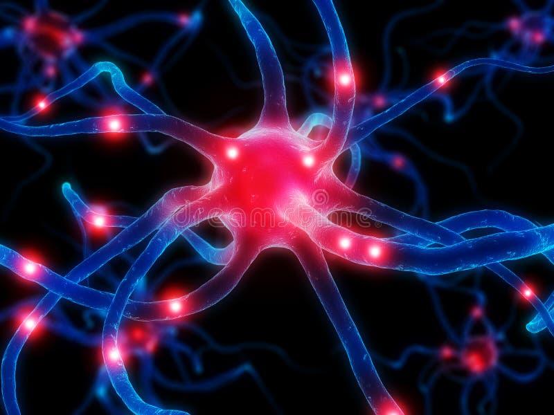 Aktives Neuron stock abbildung