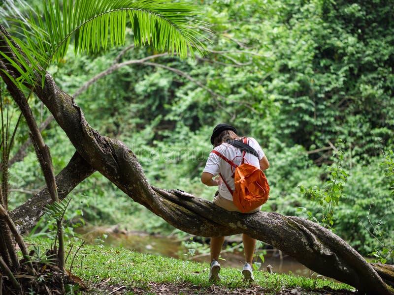 Aktivitet för asiatisk flicka för biologbotaniker utomhus- med livsstil i rainforest royaltyfria bilder