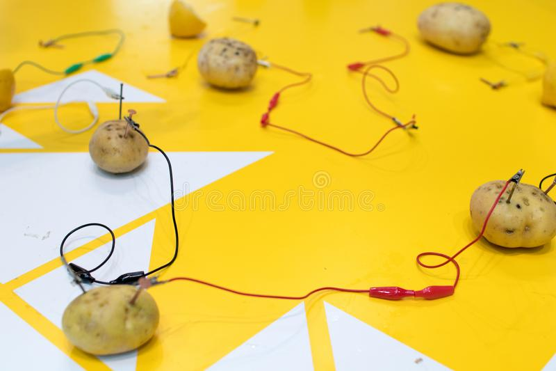 Aktivitet för potatisbatteriSTAM med potatisar, citroner, alligatorcl arkivbild