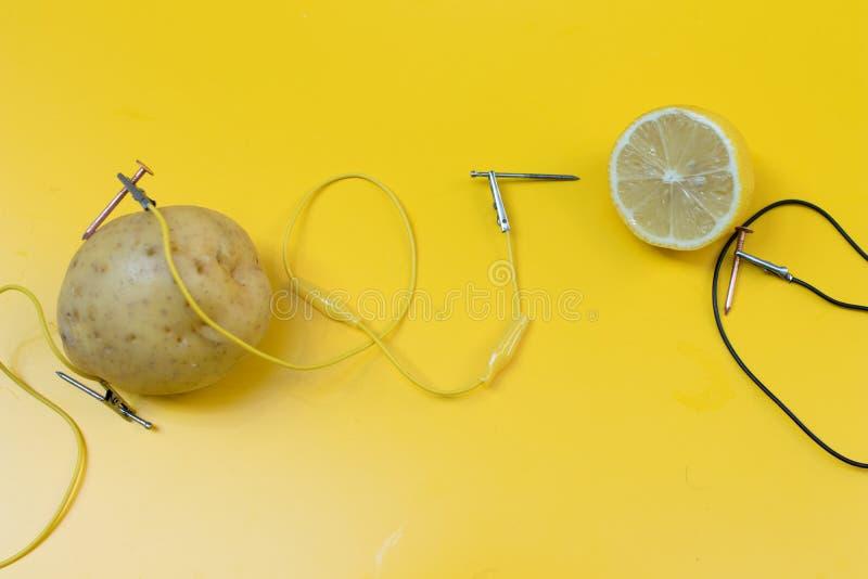 Aktivitet för potatisbatteriSTAM med potatisar, citroner, alligatorcl arkivfoton