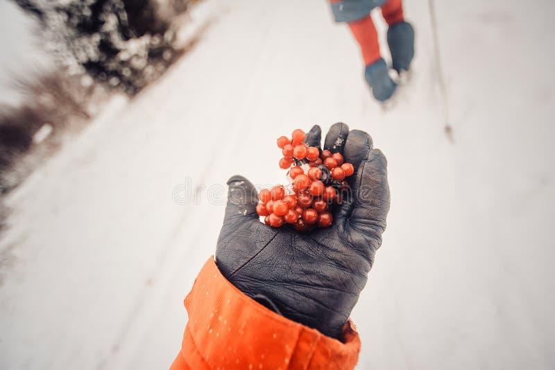 Aktivitet för vintersport Kvinnafotvandraren som fotvandrar med ryggsäcken, och snöskor som snowshoeing på snö, skuggar skogen i  arkivfoton