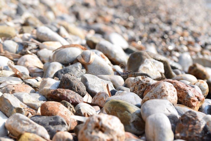 aktuella stenar för strand royaltyfria foton