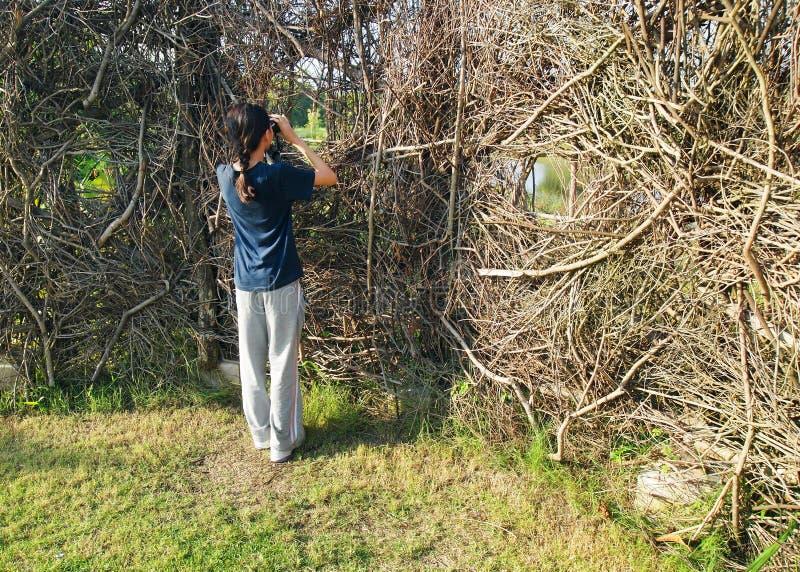 aktywności dziewczyny kryjówki natura zdjęcie royalty free