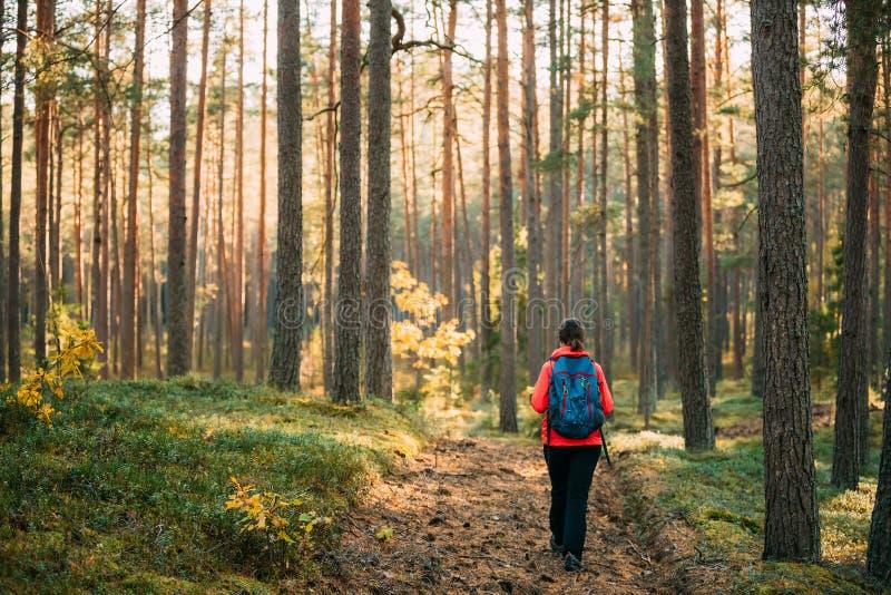 Aktywny Młody Dorosły Kaukaski kobiety Backpacker odprowadzenie W jesieni fotografia stock
