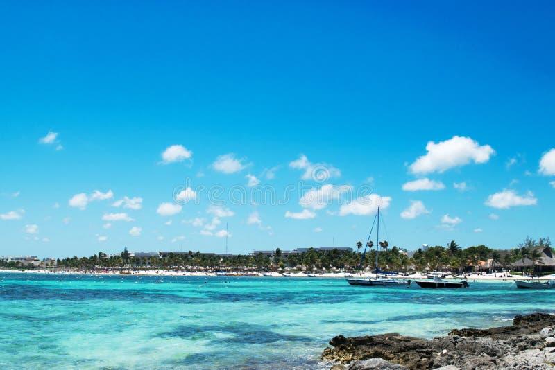 Akumal fjärd, en sköldpaddafristad på karibiskt fotografering för bildbyråer