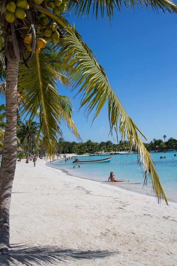 Akumal karibisk strand - Mexico Mayan Riviera arkivbilder