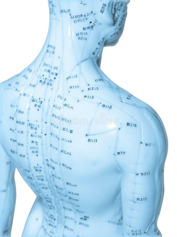 Akupunktur-Konzept stockbilder