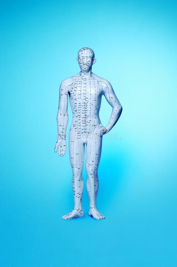 Akupunktur-Mann stockbild