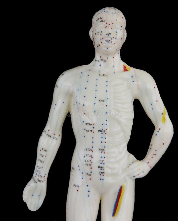 Akupunktur-Mann lizenzfreie stockfotografie