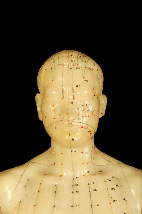 akupunktura punktów zdjęcia stock